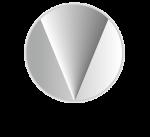 logo_vivid